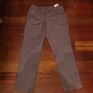 NWT Loft straight leg dress pants